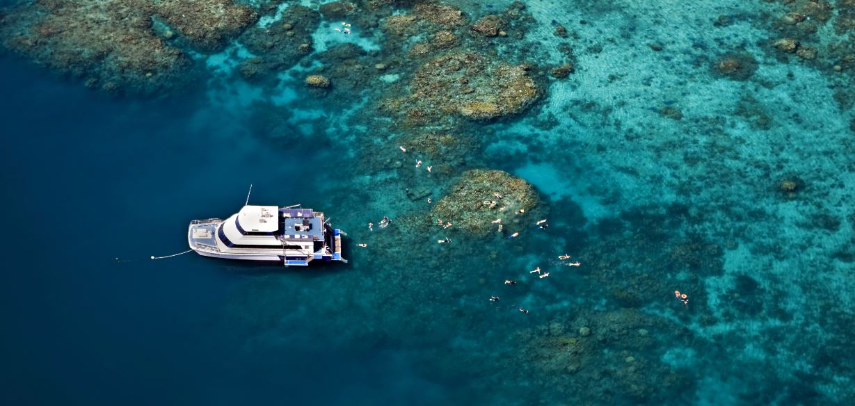 Reef Cruise Great Barrier Reef