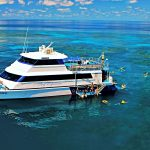 Luxury Great Barrier Reef and Daintree Rainforest Getaway (2 Day)