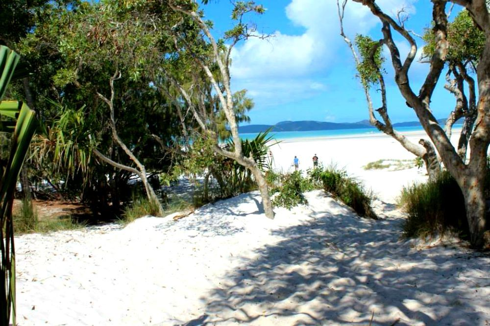 7 km Whitehaven Beach