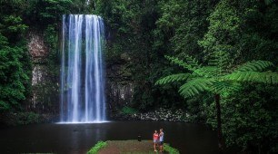Millaa Millaa Falls, North Queensland Australia