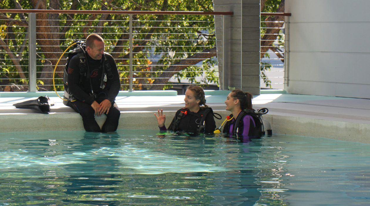 Indoor pool at Port Douglas Dive Centre