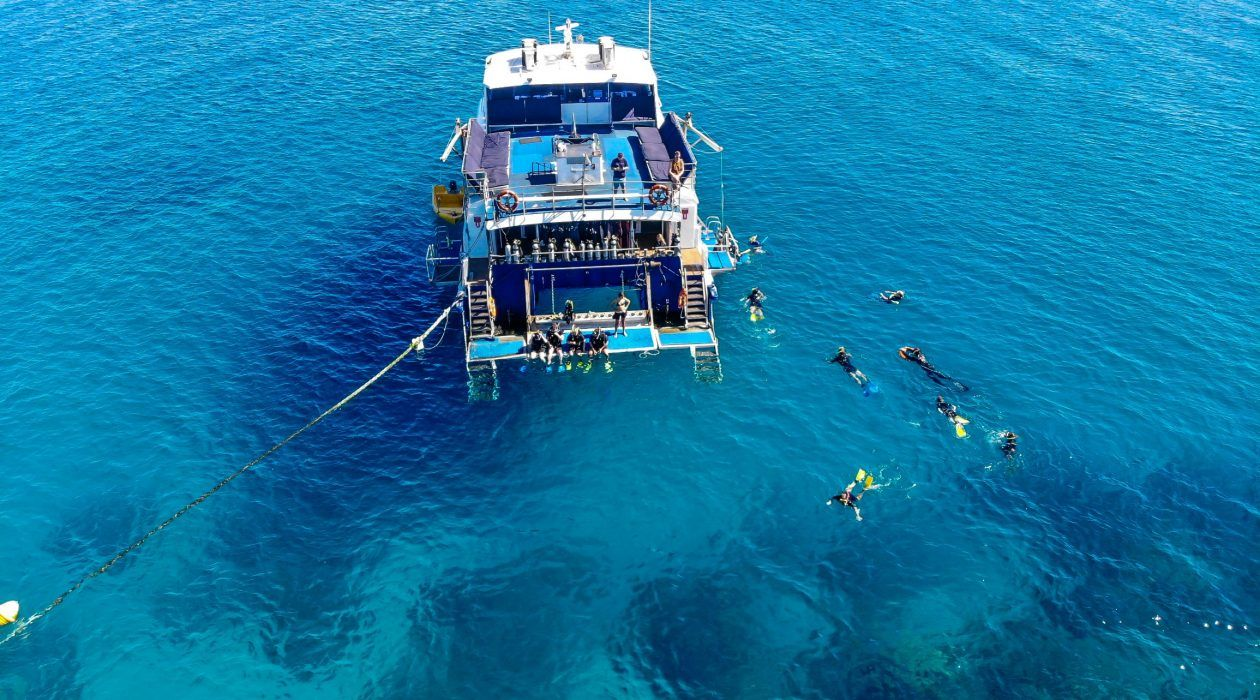 Snorkel and Dive Straight off the Boat